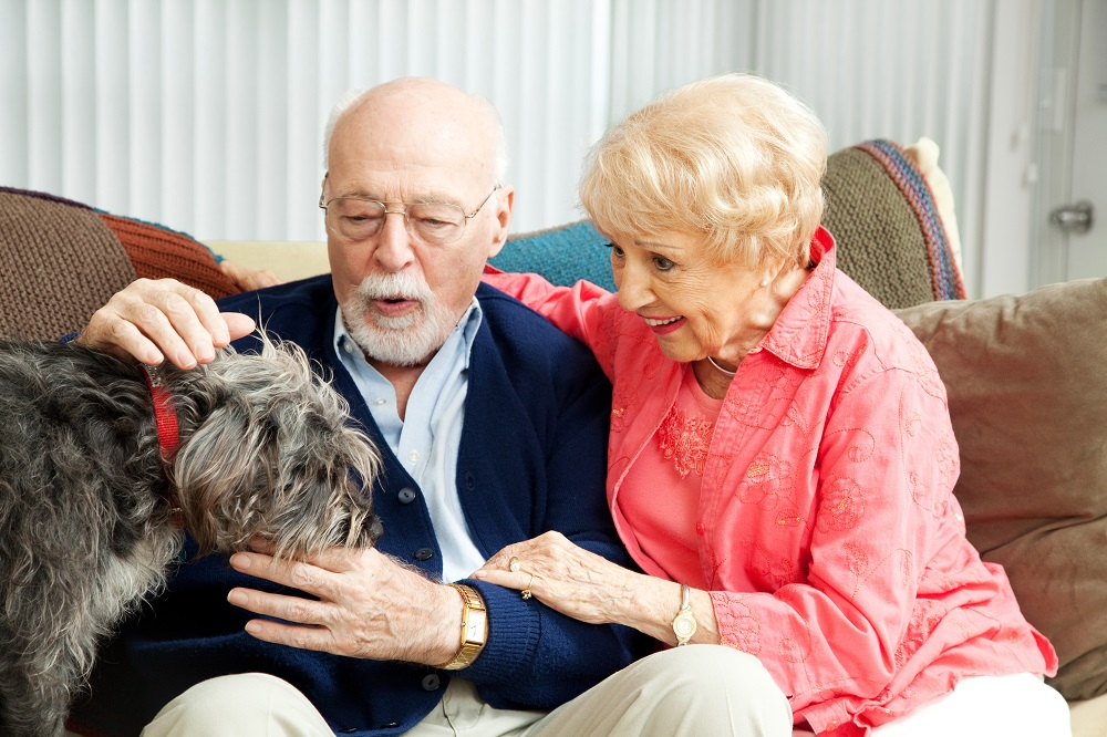 Benefits of Therapy Dogs in Senior Living
