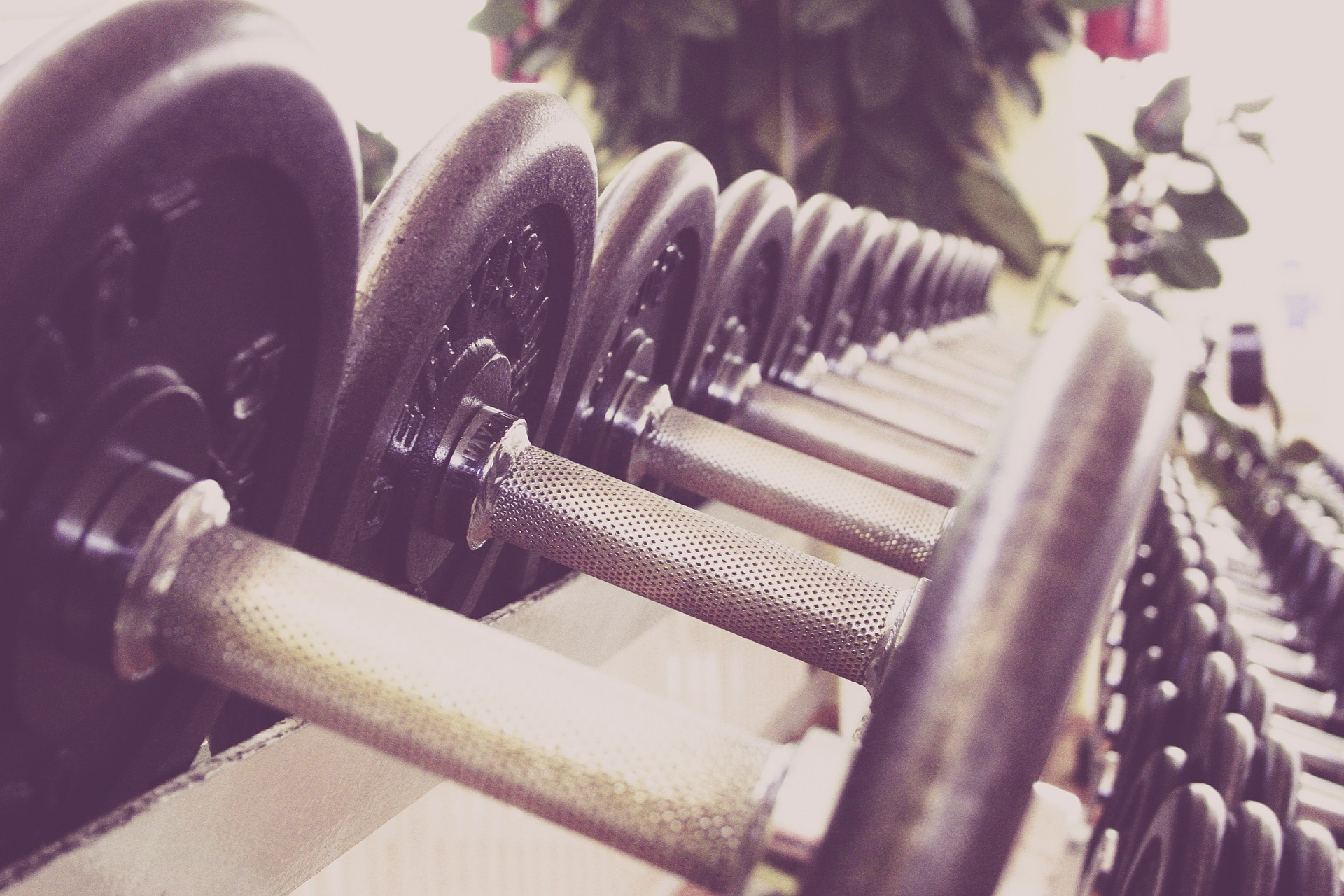 Strength Training Key to Maintaining Health